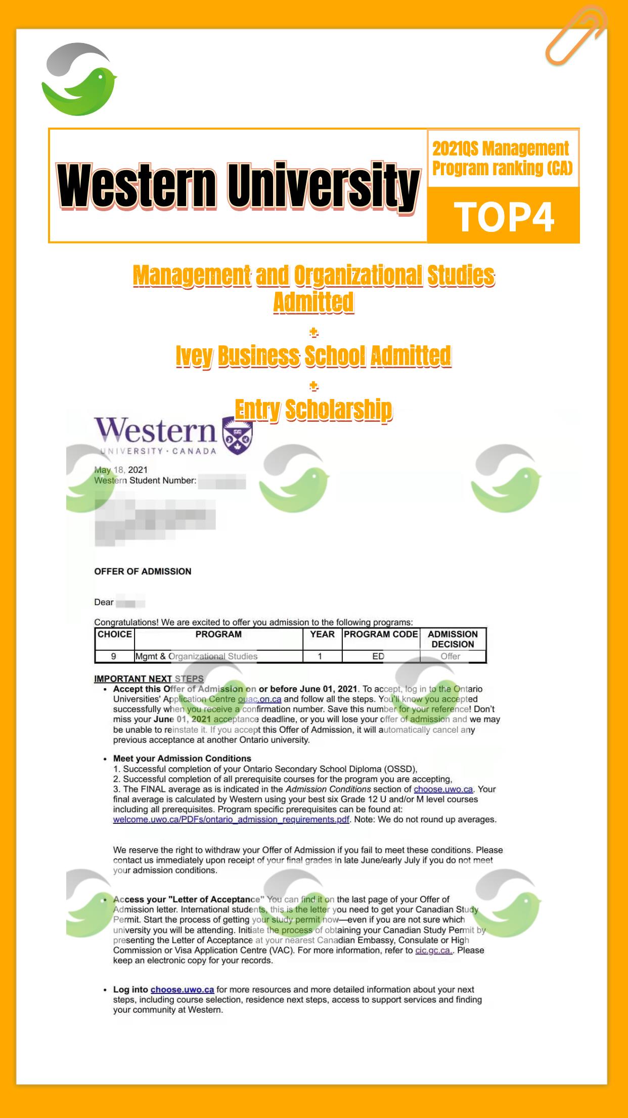 5-英文_western management_offer海报